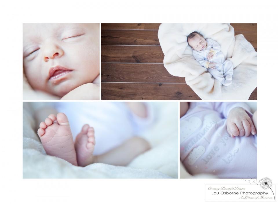 lou osborne photography newborn